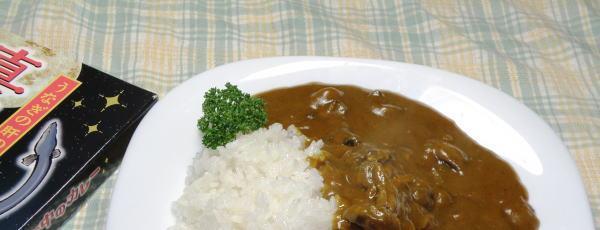 ウナギの肝カレー