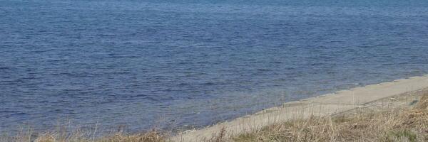陸奥湾ホタテはこのような海で育ちます