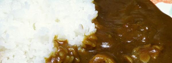 青森県田子産ニンニクカレー