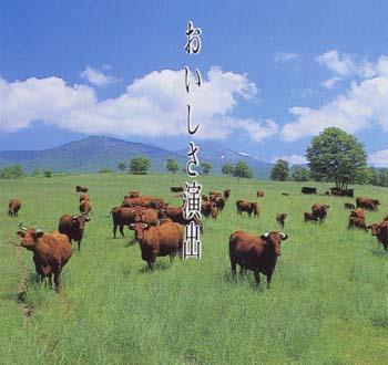 自然放牧の短角牛