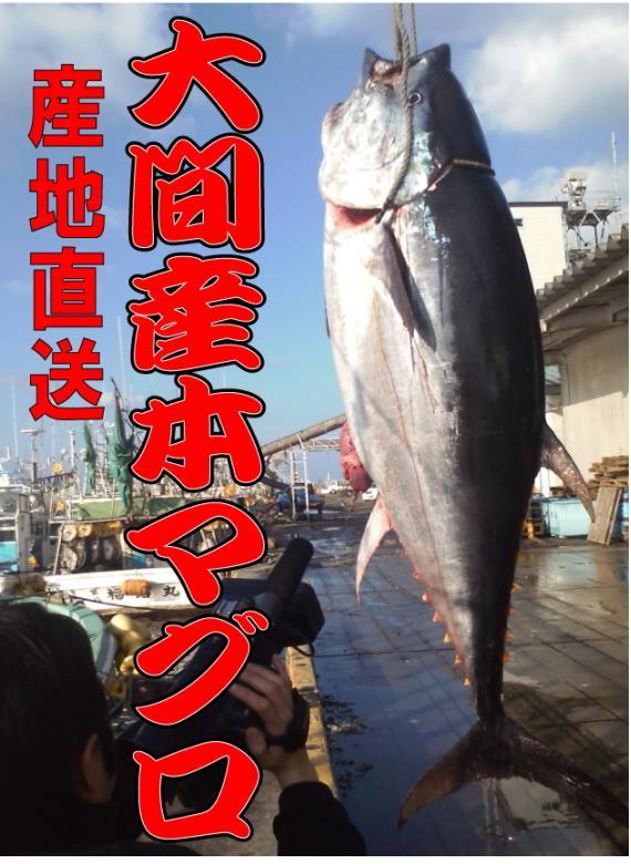 大間の鮪を東京築地に卸す会社「魚忠」より産地直送致